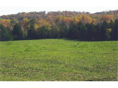 Potosi Farm For Sale: Soules Chapel Road