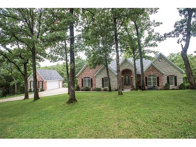 Wildwood Single Family Home For Sale: 1529 Lookout Mountain Drive