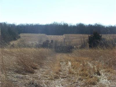 Pike County Farm For Sale: Pike 8