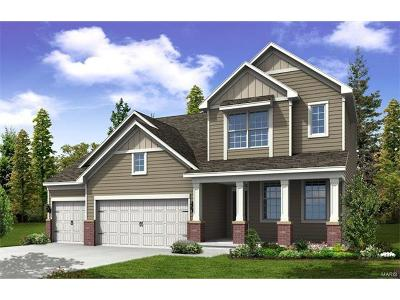 Dardenne Prairie Single Family Home For Sale: 308 Chestnut Creek Circle