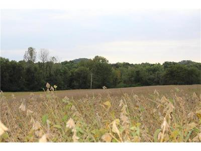 Pike County Farm For Sale: Hwy 79