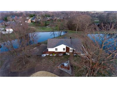 Edwardsville Single Family Home For Sale: 6527 Fox Lake Drive