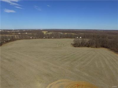 Troy Farm For Sale: Bueneman