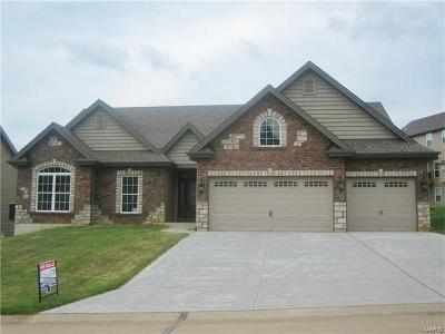 St Peters Single Family Home For Sale: 106 Auburn Trace Pointe