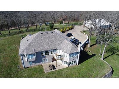 Bonne Terre Single Family Home For Sale: 8454 E Hwy