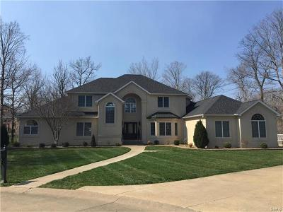 Cape Girardeau Single Family Home For Sale: 146 Lake Shire Court