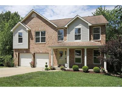 Fairview Heights Single Family Home For Sale: 224 Hall Point