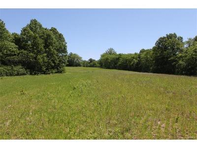 Pike County Farm For Sale: Pike Co Rd 9117