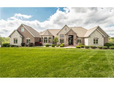 Wentzville Single Family Home Contingent No Kickout: 115 Avondale Meadows Drive