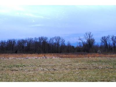 Moscow Mills Farm For Sale: 366 Hampel