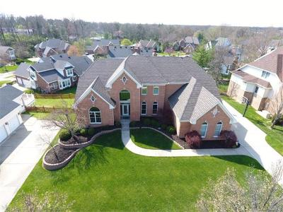 Creve Coeur Single Family Home For Sale: 687 Questover Lane