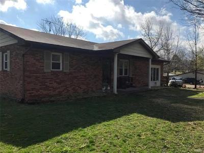 Potosi Single Family Home For Sale: 17453 S. State Hwy 21