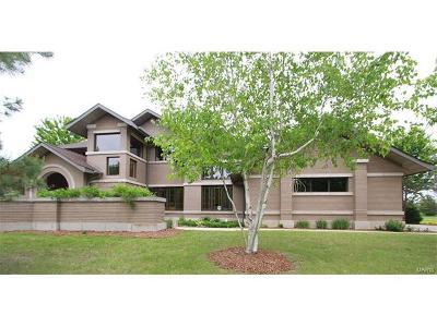 Caseyville Single Family Home For Sale: 1103 Far Oaks Drive