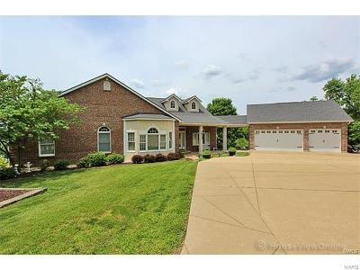 Bonne Terre Single Family Home For Sale: 629 Marseilles Drive