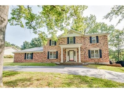 Chesterfield Single Family Home For Sale: 15217 Strollways Drive