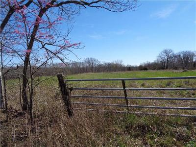 Pike County Farm For Sale: 18520 Hwy F