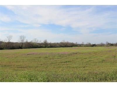 Warrenton Farm For Sale: N. Service Road, 37.2 Acres