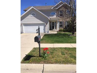 Single Family Home For Sale: 2420 Plum Grove Drive
