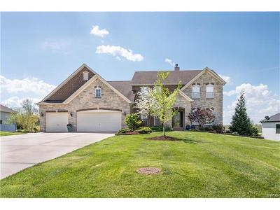 Columbia Single Family Home For Sale: 606 Briar Lake Place
