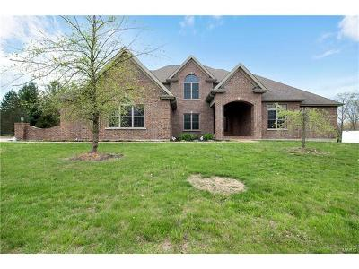 Franklin County Single Family Home For Sale: 793 Marks Drive