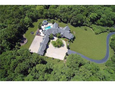 Town and Country Single Family Home For Sale: 1290 Dry Ridge Road
