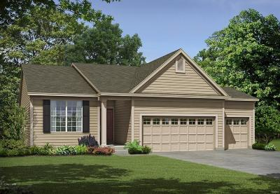 Lake St Louis Single Family Home For Sale: 1 Tbb-Denmark @ Shady Creek