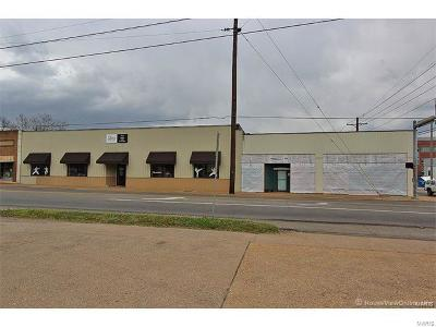 Scott County, Cape Girardeau County, Bollinger County, Perry County Commercial For Sale: 6 North Sprigg St