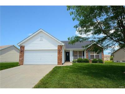 FAIRVIEW HEIGHTS Single Family Home For Sale: 813 Terra Springs Way Drive