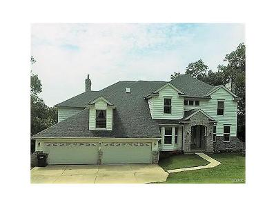 Lincoln County Single Family Home For Sale: 307 Sundance Court