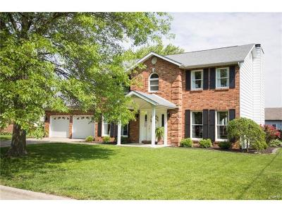 Mascoutah Single Family Home For Sale: 4 Pheasant Bend