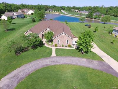 Waterloo Single Family Home For Sale: 6209 Chantilly Bend