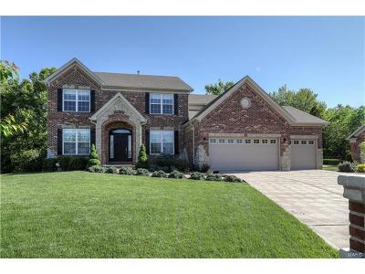 Dardenne Prairie Single Family Home For Sale: 119 Sterling Crossing Drive