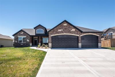 Caseyville New Construction For Sale: 1144 Pisa Drive