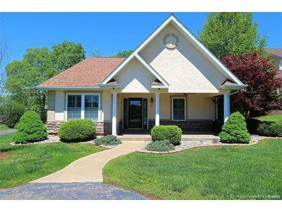 Desloge Single Family Home For Sale: 414 Trevor Court