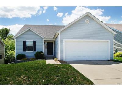 Single Family Home For Sale: 146 Fox Creek Drive