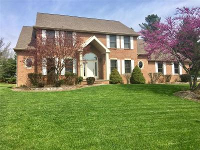 Single Family Home For Sale: 46 Willow Creek Drive