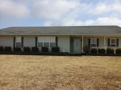 Scott County, Cape Girardeau County, Bollinger County, Perry County Single Family Home For Sale: 378 County Road 405