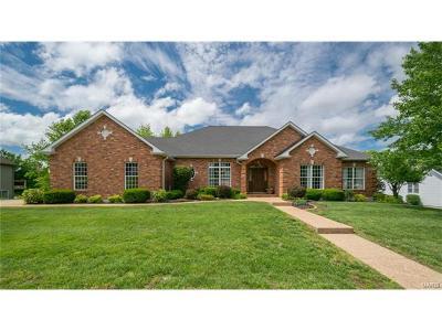 Washington Single Family Home For Sale: 341 Lake View Drive