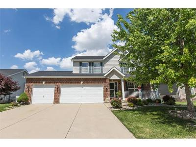 Fairview Heights Single Family Home For Sale: 729 Wild Horse Creek