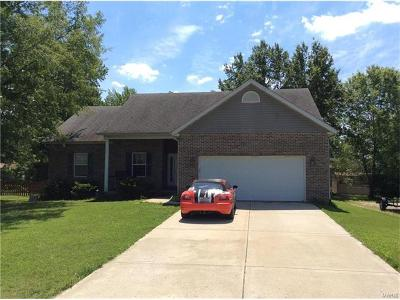 Edwardsville Single Family Home For Sale: 381 High Point