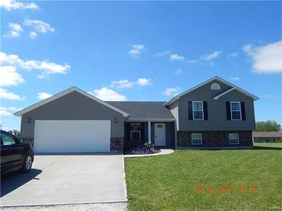 Bowling Green Single Family Home For Sale: 14881 Pike 343