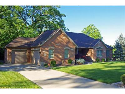 Maryville Single Family Home For Sale: 2860 Woodfield Drive
