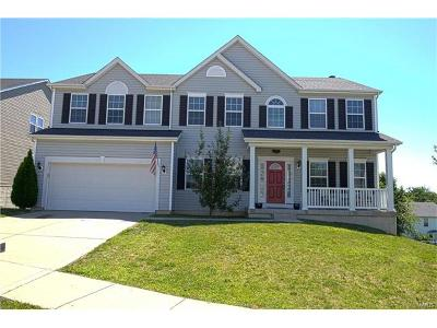 St Charles Single Family Home For Sale: 80 South Brighton Park Court