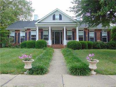 Maryville Single Family Home For Sale: 9 East Huntington