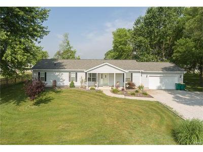 Mascoutah Single Family Home For Sale: 727 South Independence Street