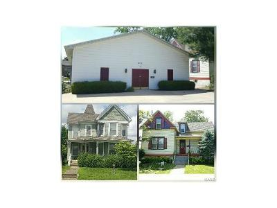 Scott County, Cape Girardeau County, Bollinger County, Perry County Commercial For Sale: 631 South Sprigg Street