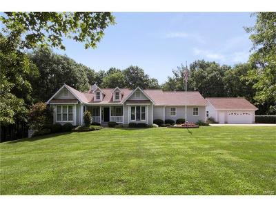Bonne Terre Single Family Home For Sale: 8385 Mapavi Drive