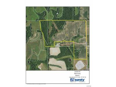 Ralls County Farm For Sale