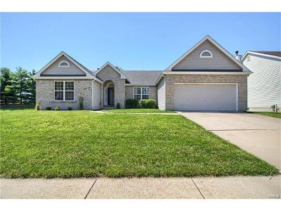 Single Family Home For Sale: 1832 Barbary Way