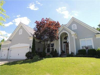 Chesterfield Single Family Home For Sale: 575 Eagle Manor Lane